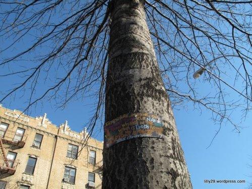 Tree Evangelism