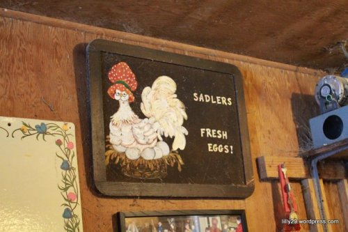 Sadler Fresh Eggs